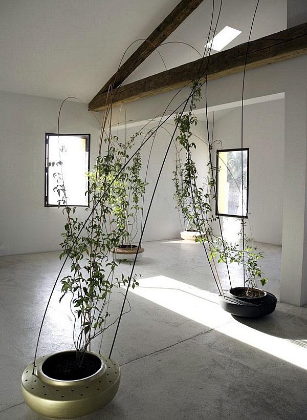 tomas-alonso-greenroom