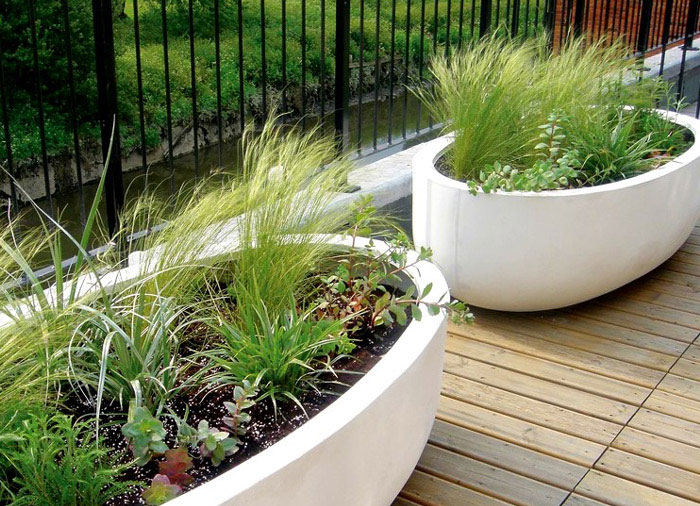 plant-containers