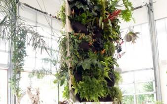 vertical gardening 338x212