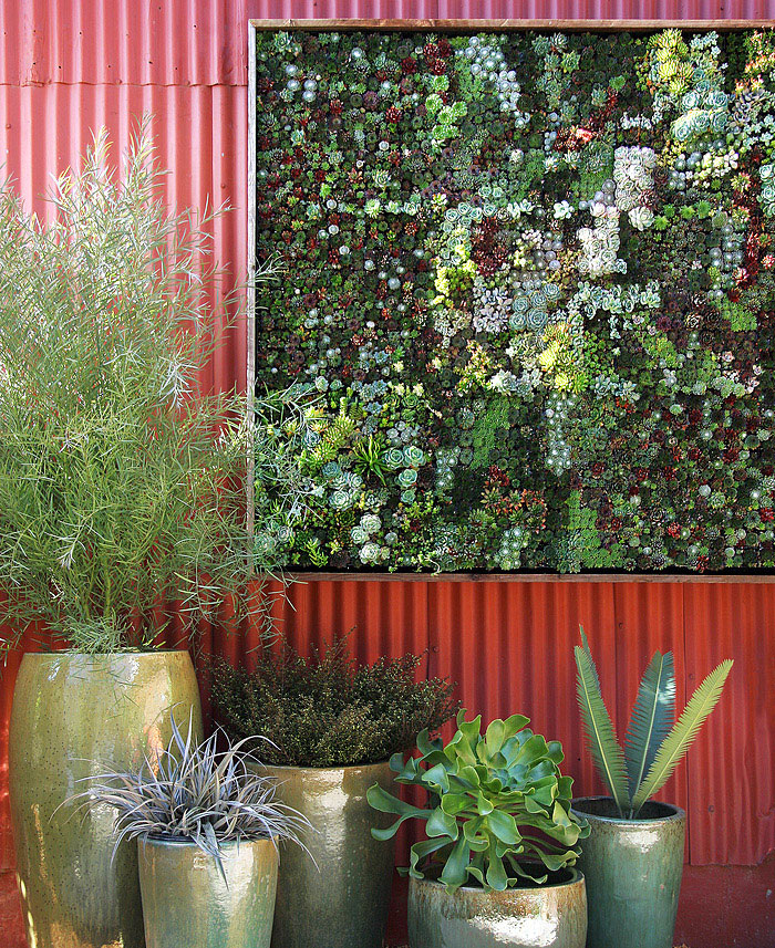 vertical surface planting