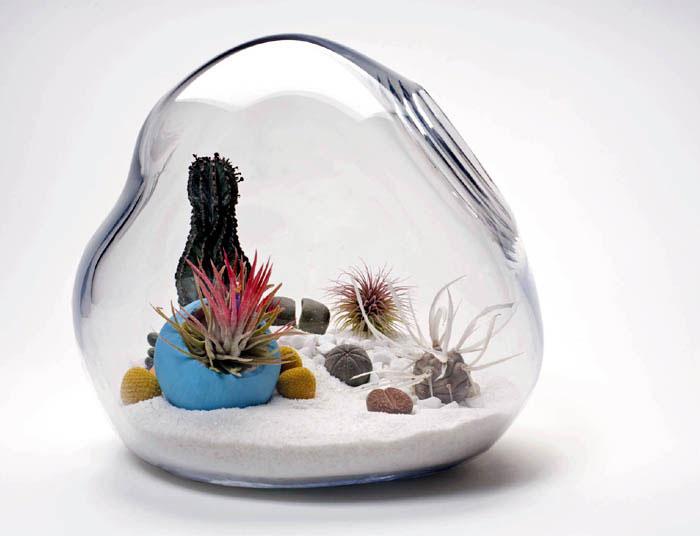 lykt terrarium