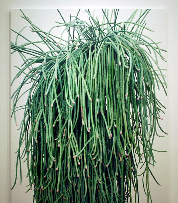 pieces art cactus