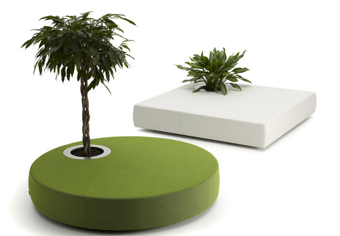 offecctoasis furniture for plants