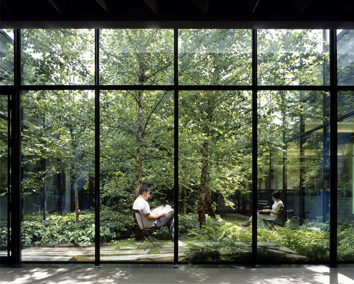 windowless work spaces landscape