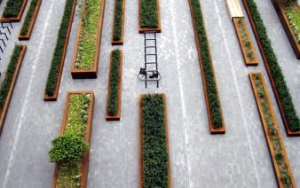 square greenery 338x212