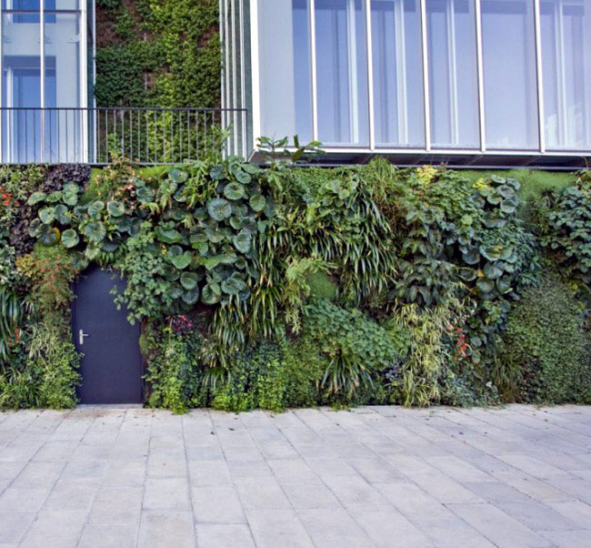 walls vertical garden