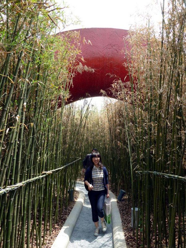 garden bridges landscape