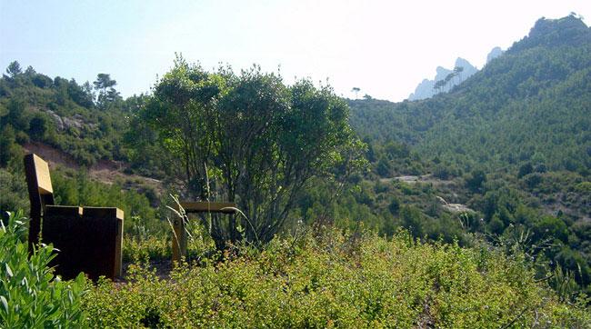 natural park landscape