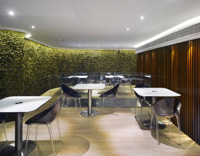 redesign café del arco dining area