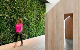 contemporary cultural center green wall 338x212