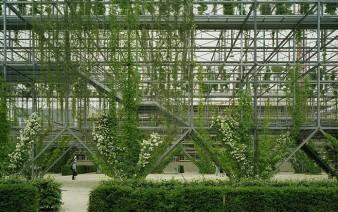 green wall park 5 338x212