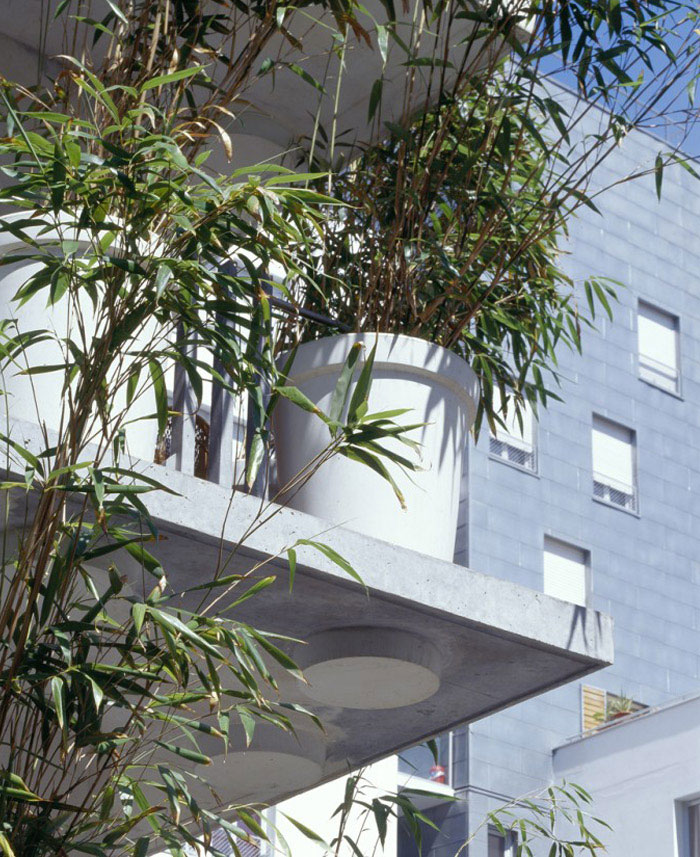 tower flower bambo
