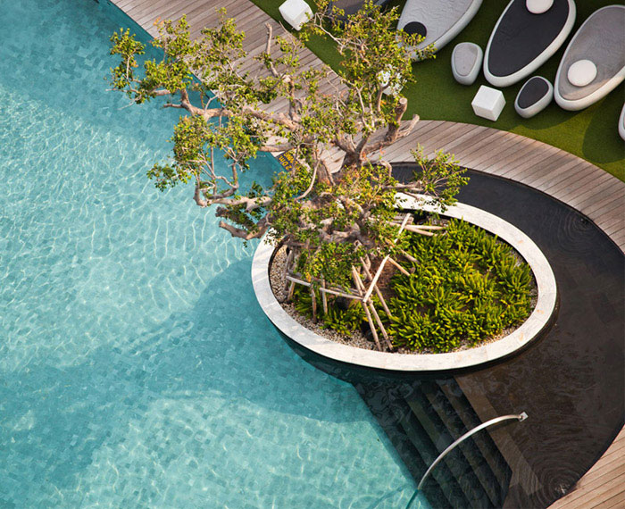 urban garden pool area