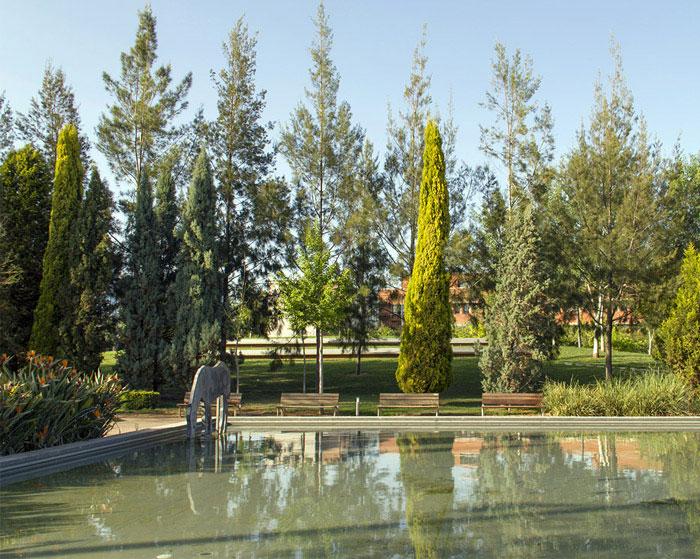 garden pool landscape