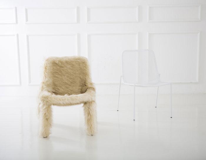 chair my puppy