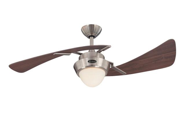 ceiling-fan4