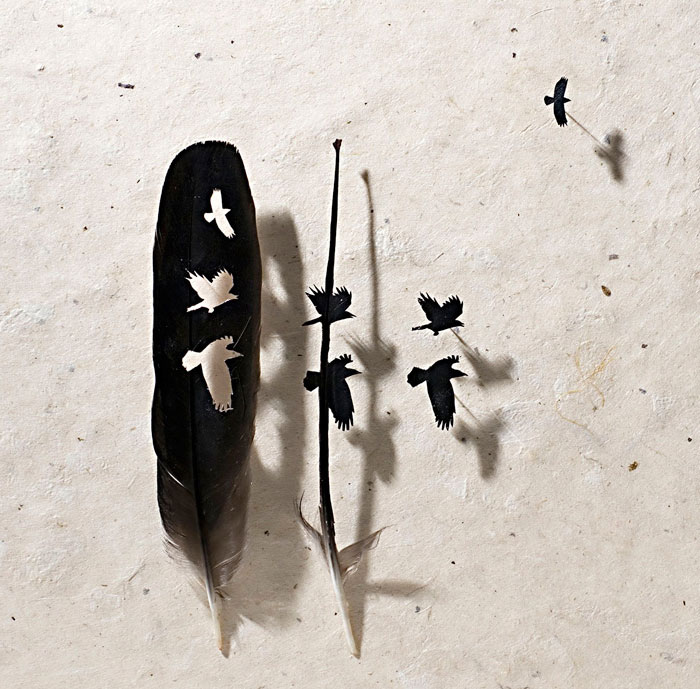 feathers-art-4