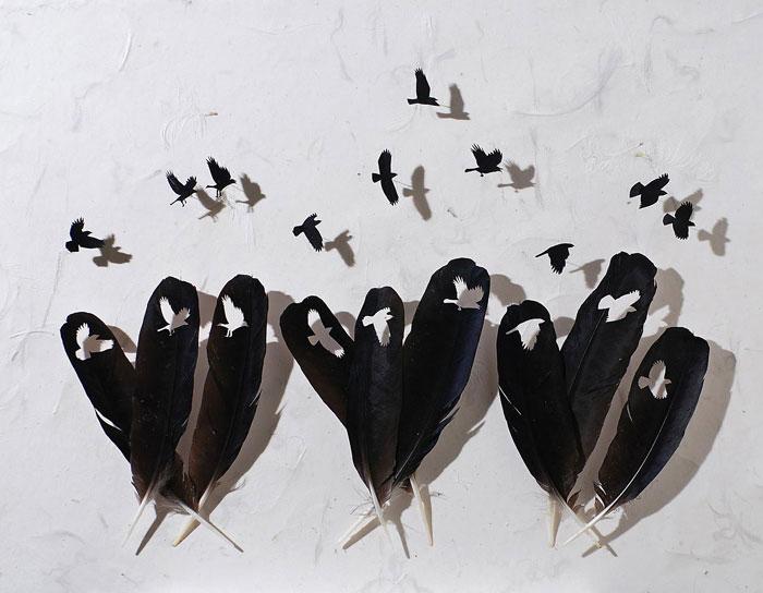 feathers-art2