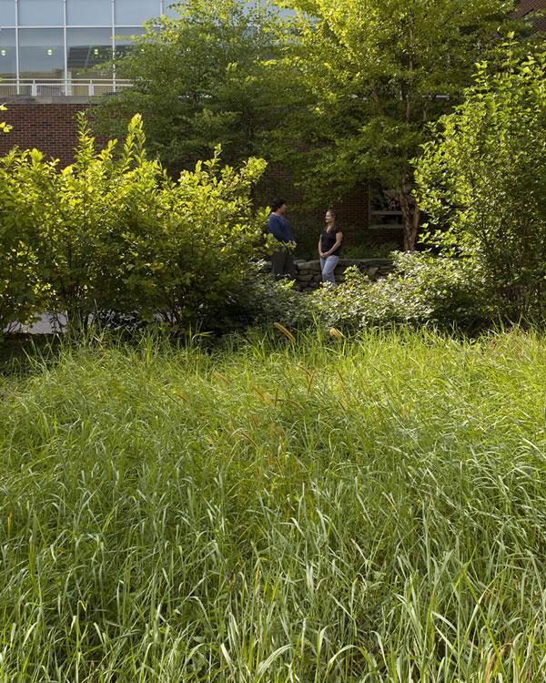 model-outdoor-landscape