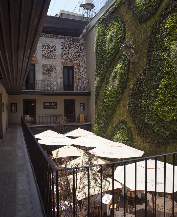inner-courtyard-green-wall