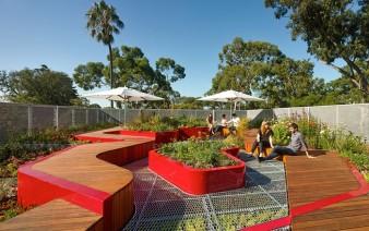 green infrastructure installation plants1 338x212