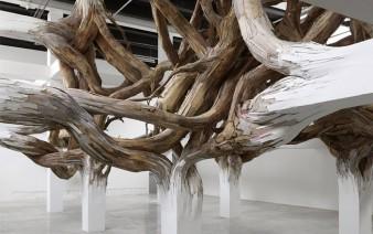 organic transformations interior exterior spaces3 338x212