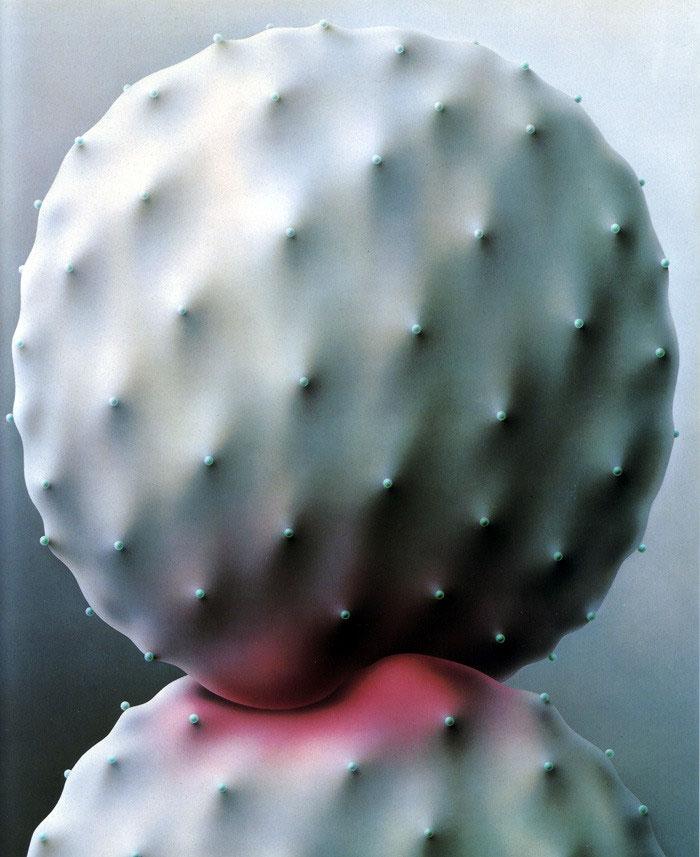 surreal-cactus-art4