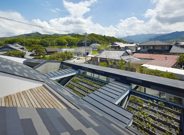 roof-generously-planted