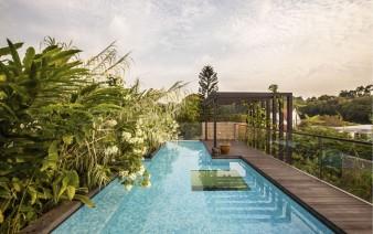 amazing garden koi pond swimming pool 338x212