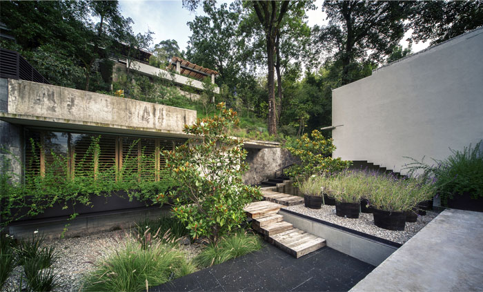 raw concrete house garden