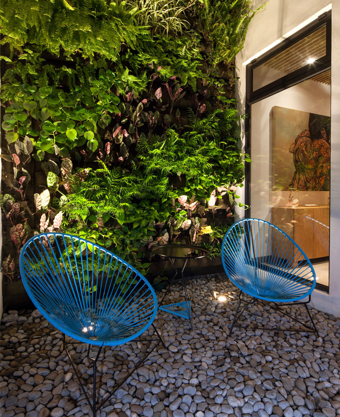plants-local-origin-stone-pavement-vertical-green-wall