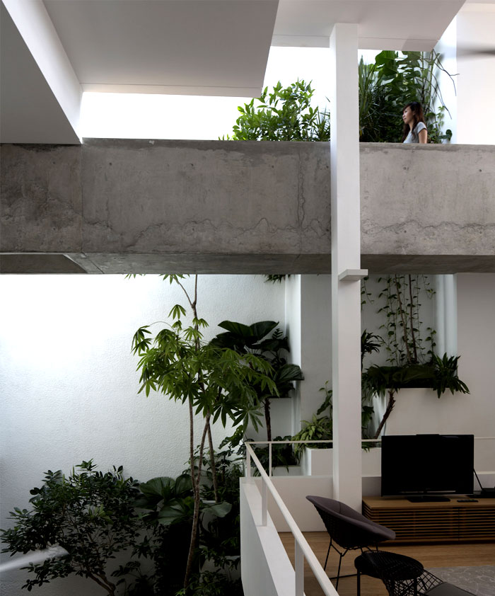 terracing-planter-boxes-support-tropical-foliage-party-wall