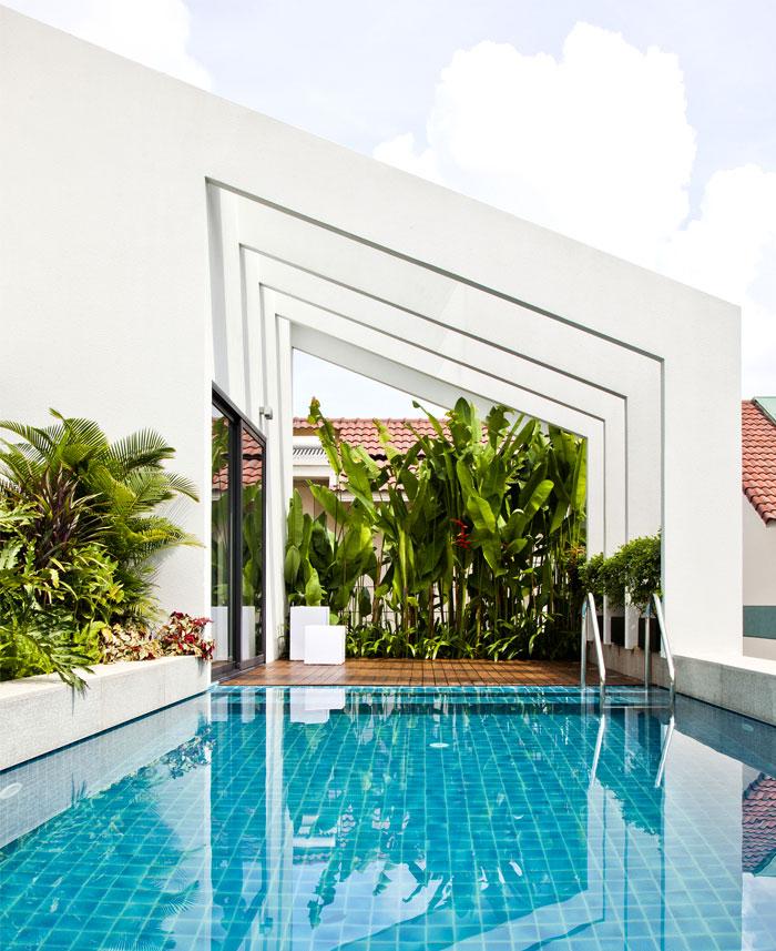 roof-terrace-greenery-swimming-pool
