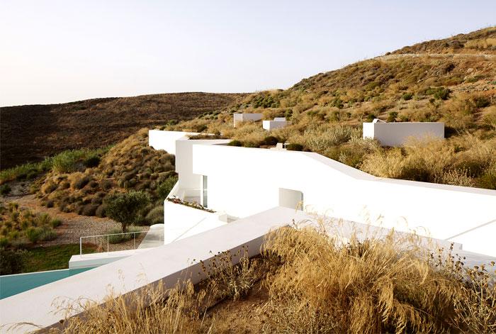 vegetation-green-roofs
