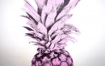 pineapples art 338x212