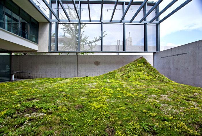 landscape-architecture-nomad-studio-6