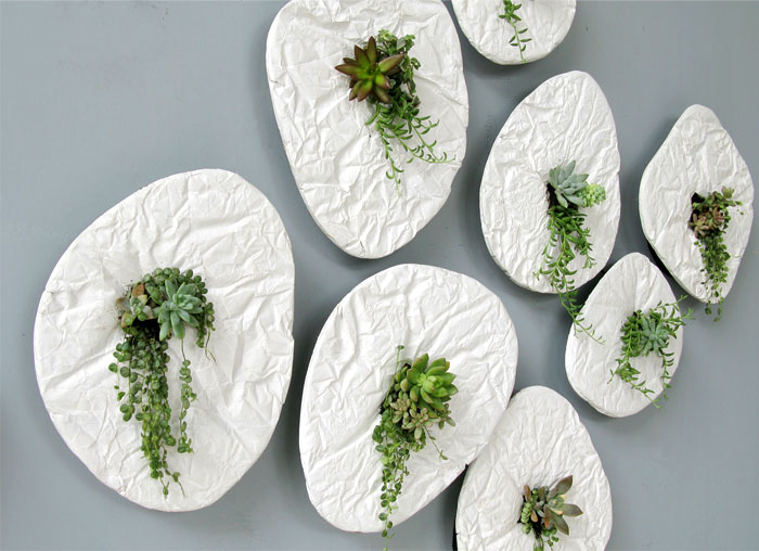 seed wall planter 1