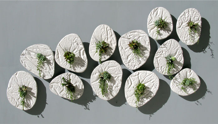 seed wall planter