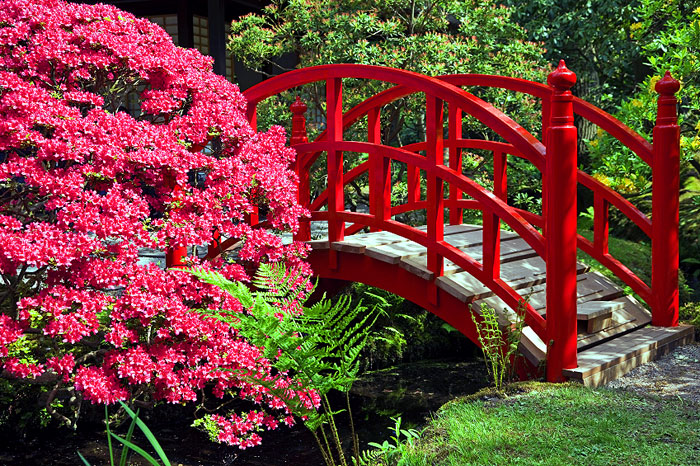 arched chinese red bridge