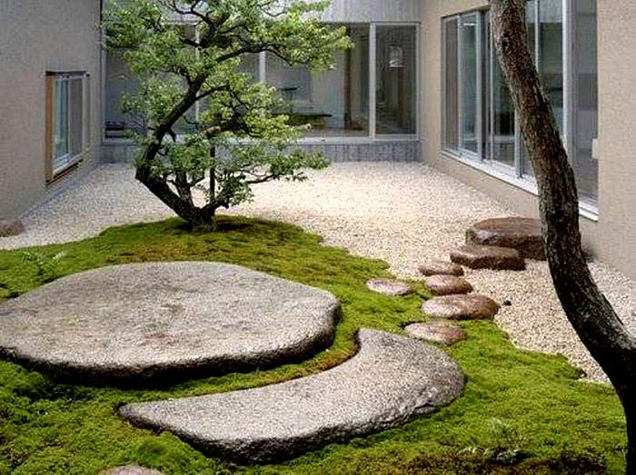 contemporary moss garden idea