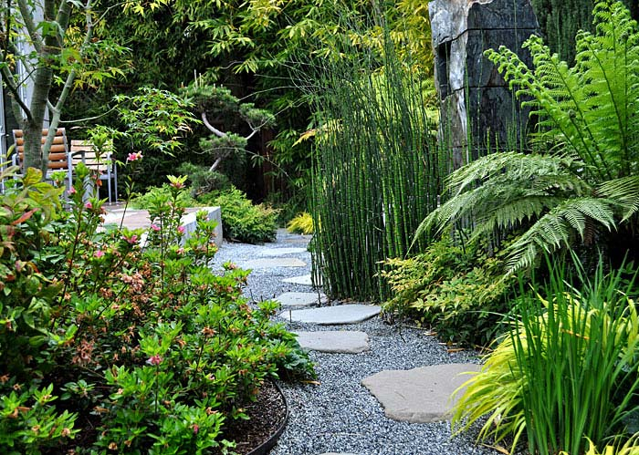 green bamboo garden idea asian backyard
