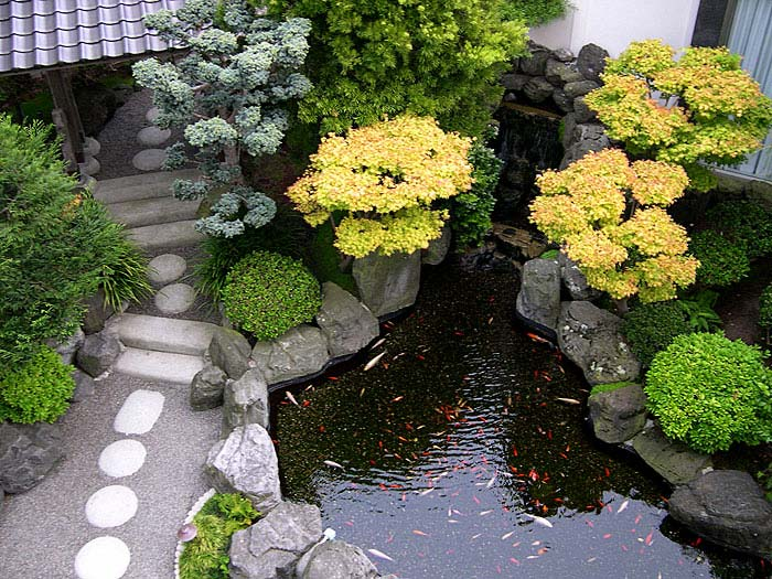pathway stone garden koi fish pond ideas