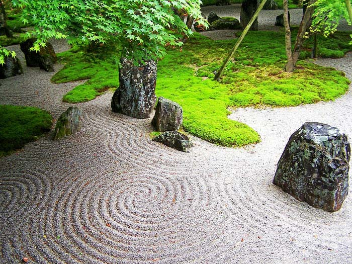 white gravel and moss zen garden design