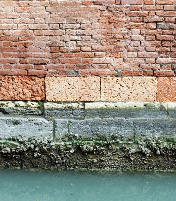 portego venetian rug sottoportico 5