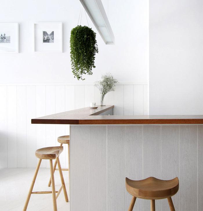 coffee shop mole design 18