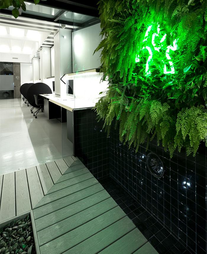 tiovivo creativo coworking space 20