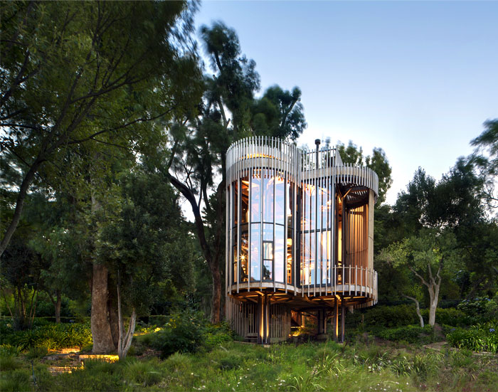 malan vorster treehouse 14