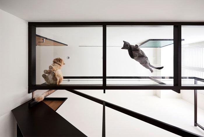 apartment parti design studio 7