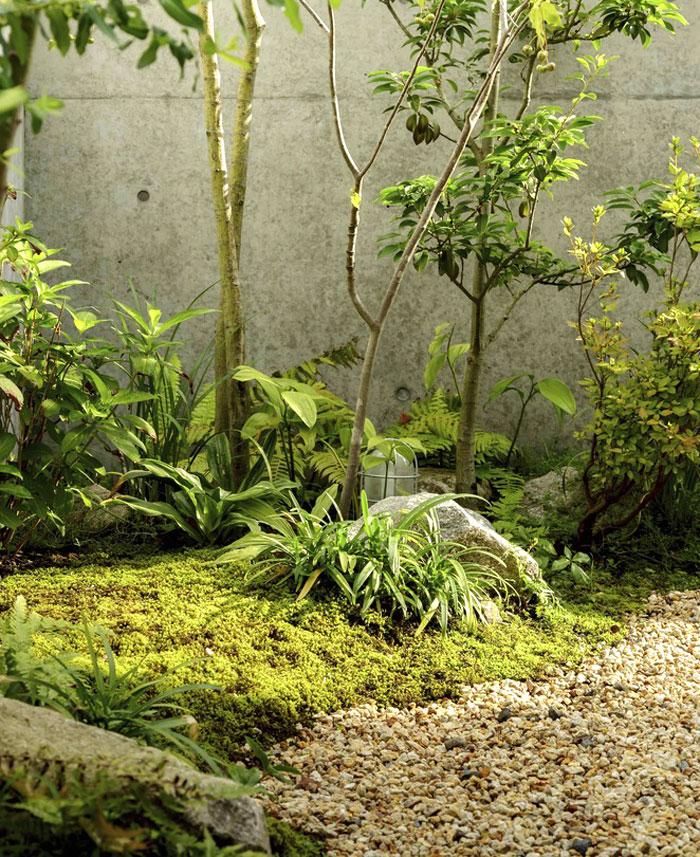 japanese house hearth architects 17