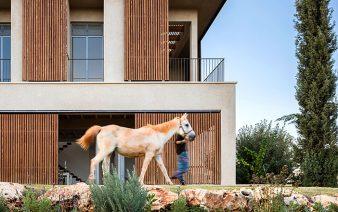 golany architect 338x212